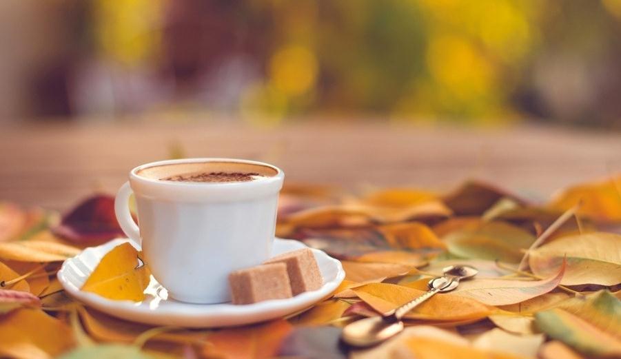 死亡之愿咖啡加盟