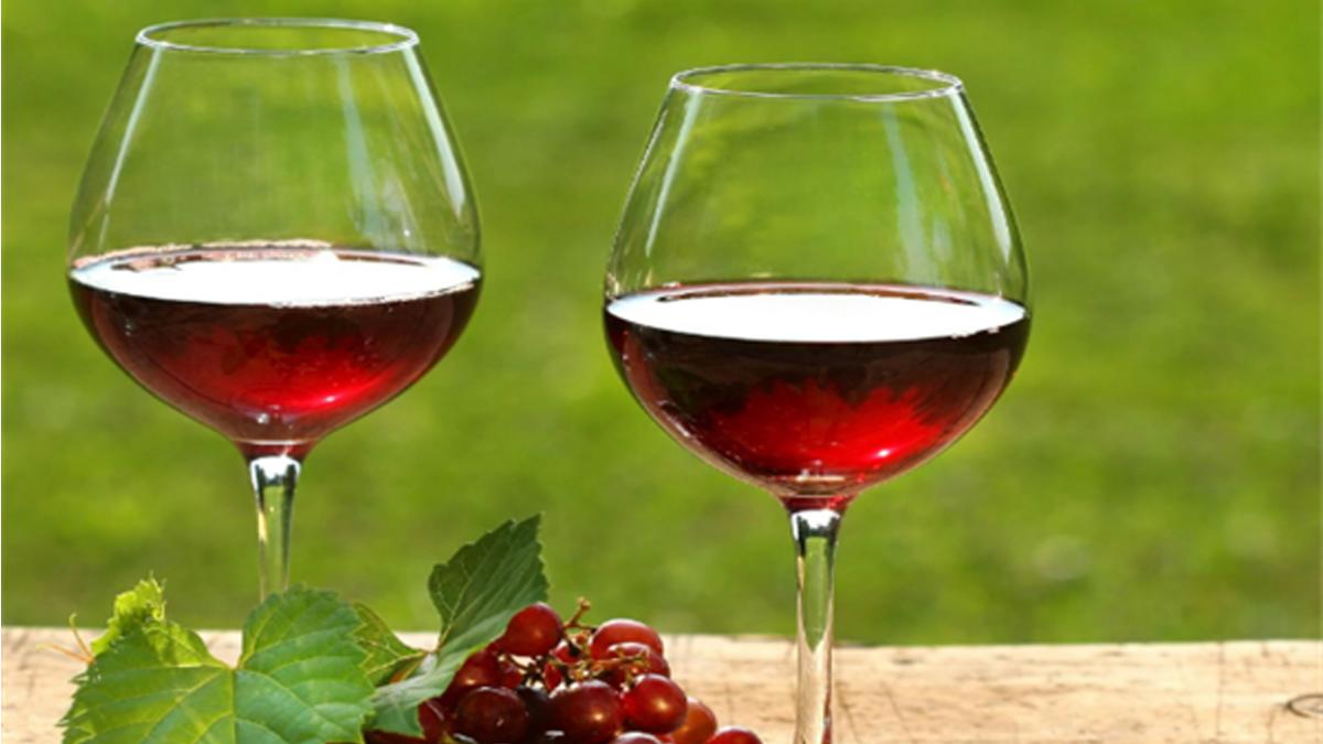 高菲红酒加盟