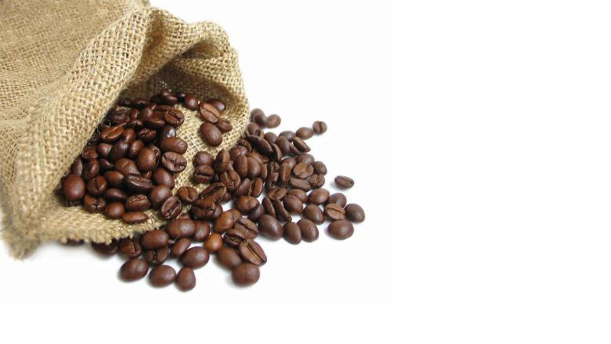 赛品咖啡 加盟