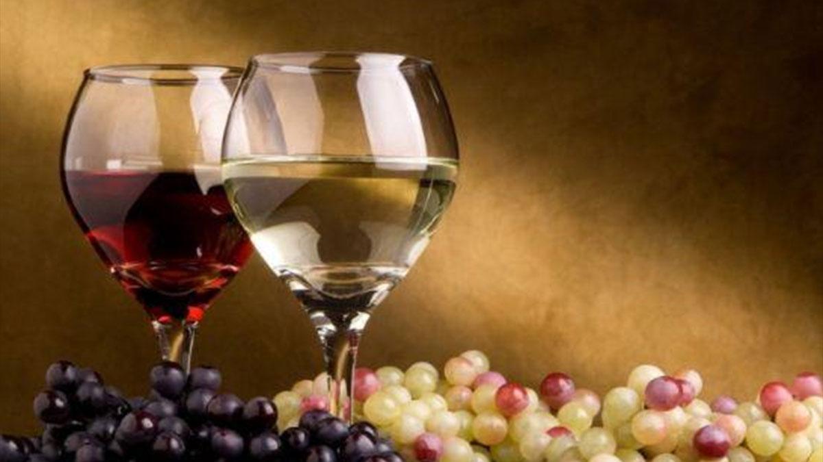 国海酒业 加盟