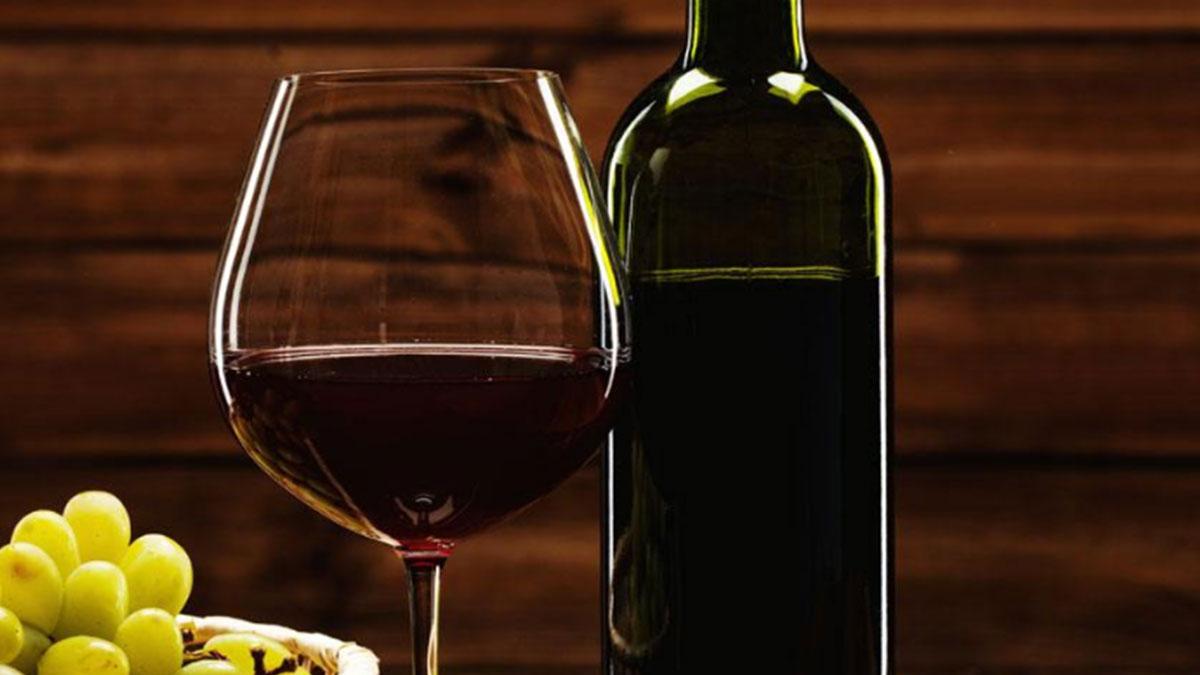 雷杜红酒加盟
