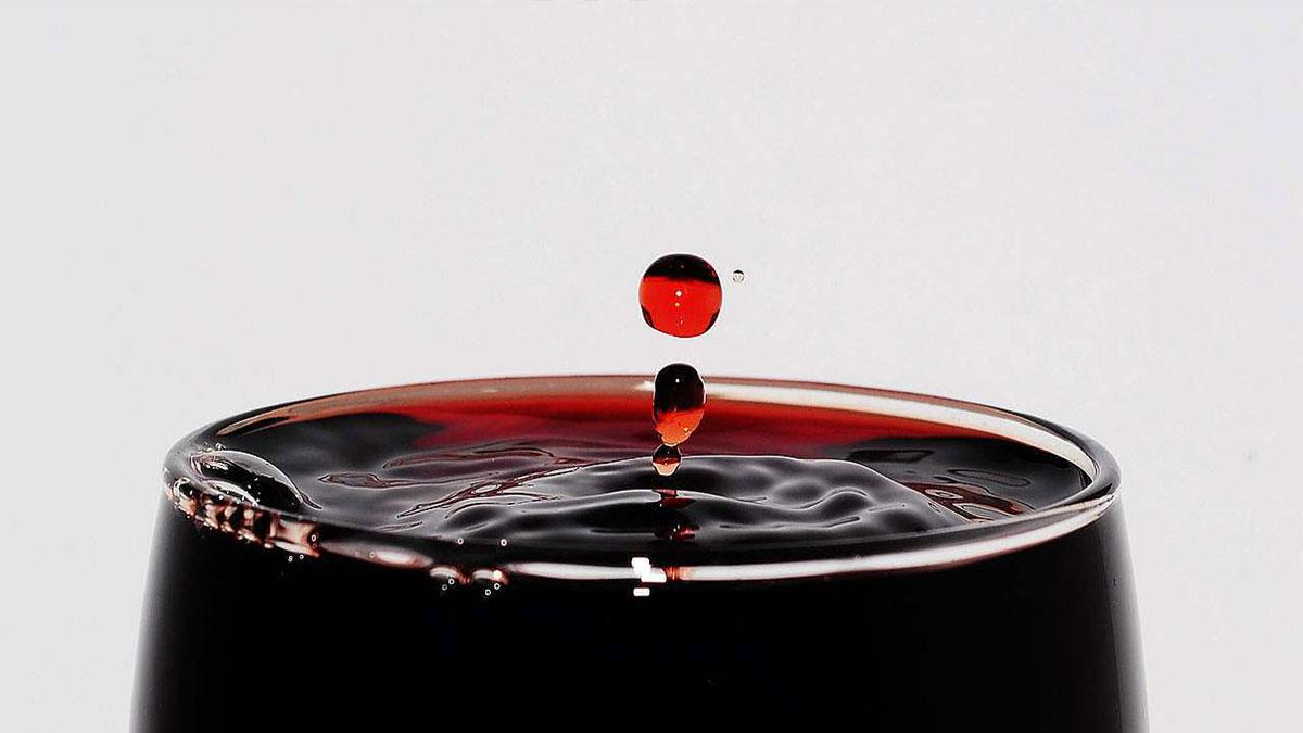 金达海利红酒加盟