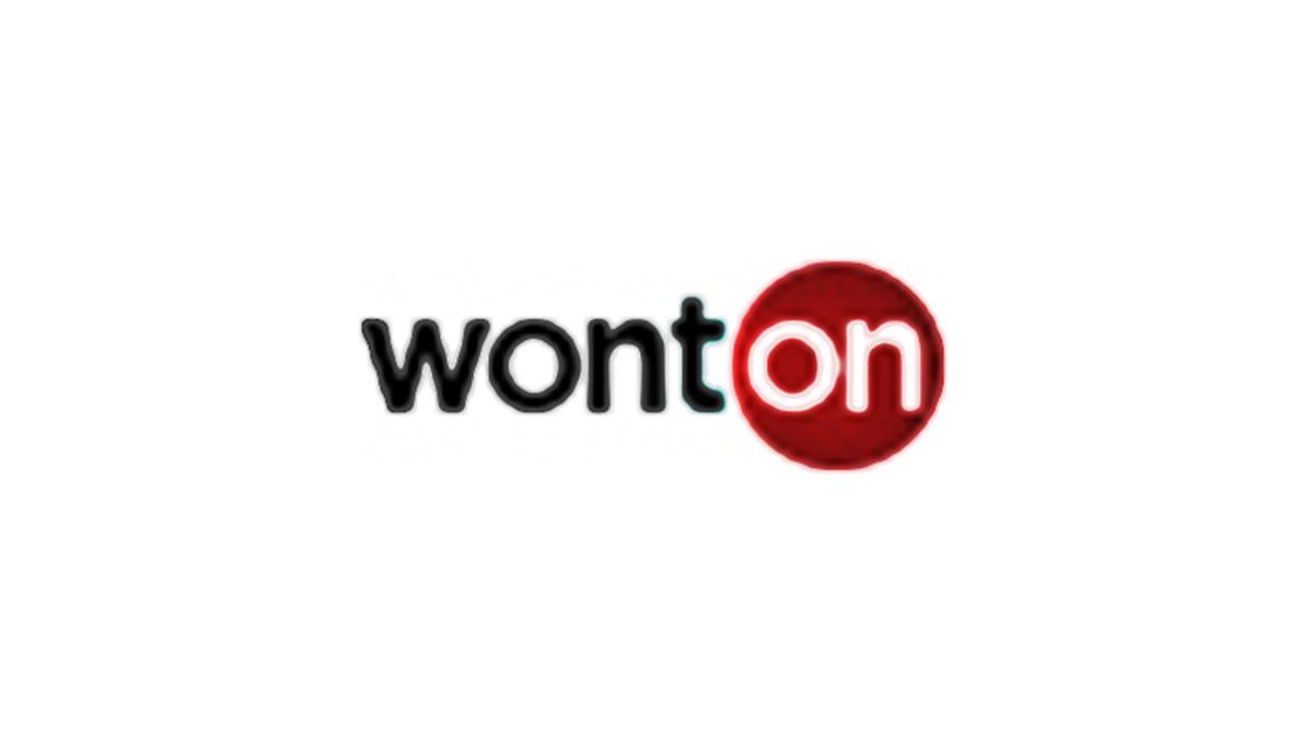 WONTON电子烟加盟