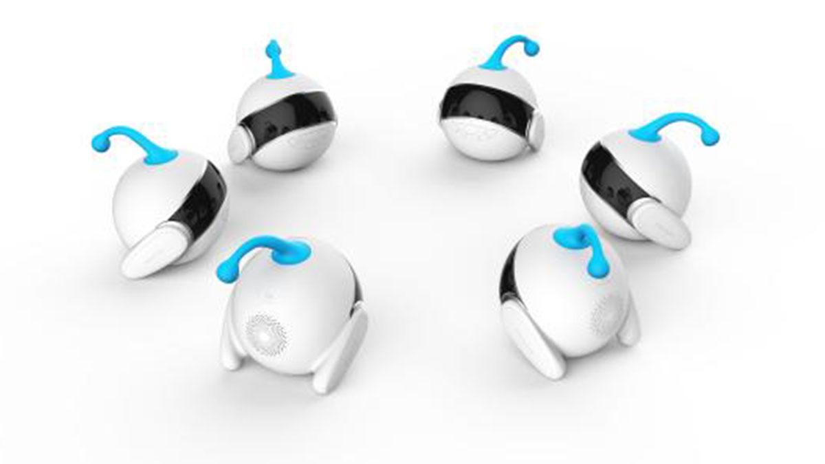 智伴机器人加盟