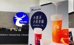 瑞幸咖啡旗下品牌「小鹿茶」:近無大礙,仍有遠憂!