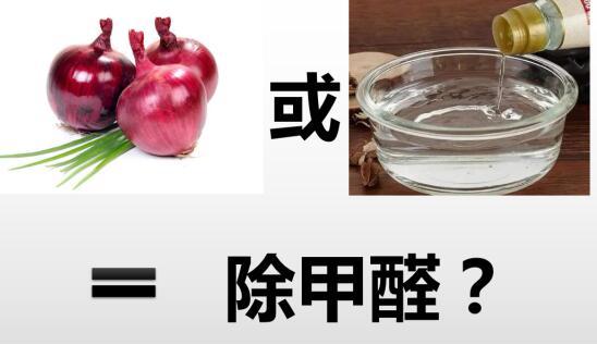 宁馨净化提醒:葱白醋能除甲醛吗?真正除甲醛的方法有哪些?