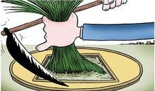 赚钱也要擦亮眼睛,餐饮加盟如何不被快招公司割韭菜?