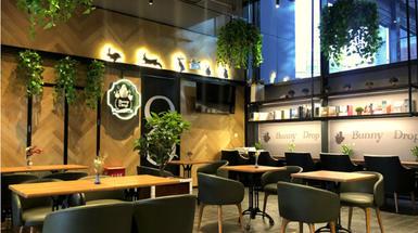 白兔糖咖啡—用态度探索温度—做有温度的咖啡西餐厅